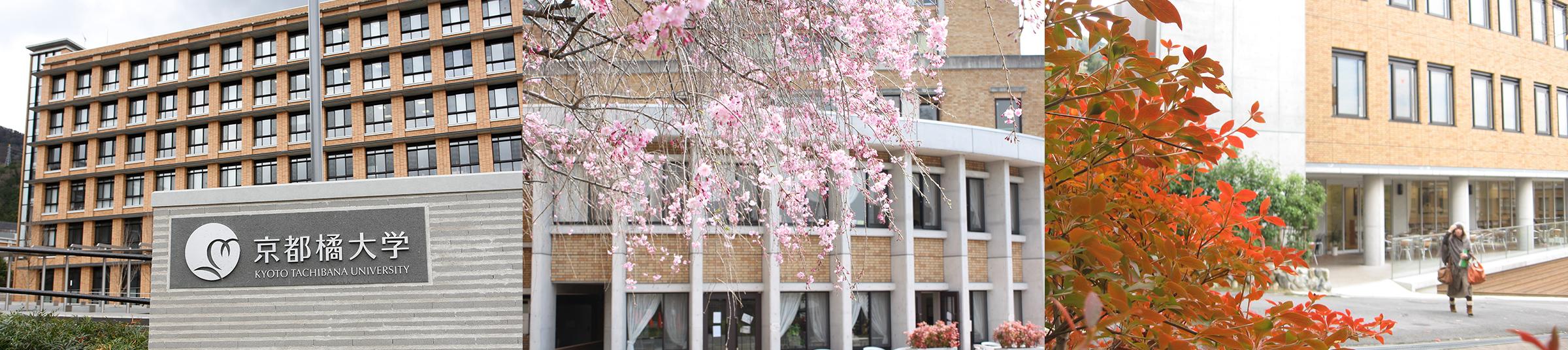 発表 京都 合格 橘 大学